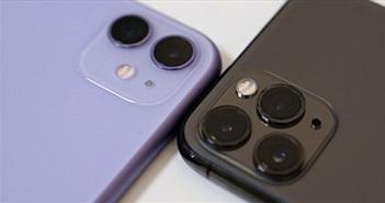 iPhone 12 5G sẽ giúp Apple thăng hoa trong năm nay
