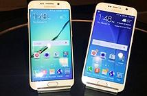 Galaxy S6, S6 Edge thể hiện được độ bền qua thử nghiệm gắt gao