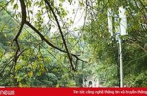 Cận cảnh nhà mạng đem 4G và wifi miễn phí phục vụ lễ hội đền Hùng 2017