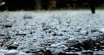 """Bạn hoàn toàn có thể ngửi thấy """"mùi"""" của mưa vì lý do này"""
