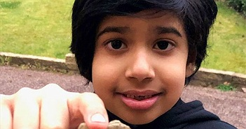 Đang chơi đùa trong sân, cậu bé 6 tuổi phát hiện san hô cổ xưa hiếm có