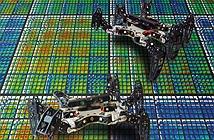 Robot bắt chước loài vật tự đi tiếp khi bị thương