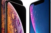 iPhone ế nhưng giá cổ phiếu Apple vẫn chót vót