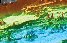 Hàng trăm miệng phun thủy nhiệt nhấp nhô dưới đáy biển