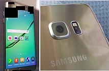 Rò rỉ hình ảnh Galaxy S6 Plus màn hình 5,5, tháng 8 ra mắt?
