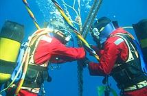 Cáp quang biển AAG ngừng hoạt động 10 ngày để sửa chữa