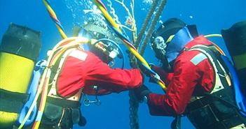 Mất 10 ngày để sửa cáp quang biển AAG
