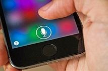 Apple đang bắt đầu sản xuất loa Siri