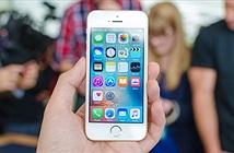 Ý nghĩa của iPhone SE 2 với tương lai Apple