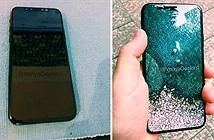 iPhone 8 sẽ bỏ Touch ID, phát hành số màu giới hạn?