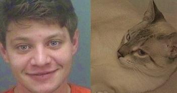 """Tên trộm """"dị"""" nhất quả đất, vào nhà chơi với mèo, bị phát hiện thì..."""