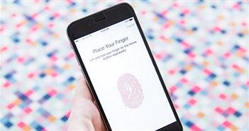 Apple tung chương trình phát hiện lỗi săn tiền thưởng trên iOS