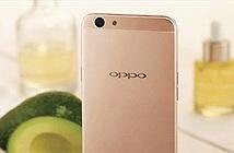 Chưa đầy 2 ngày đã có hơn 6000 đơn đặt hàng Oppo F1s