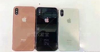 Phone 8 bất ngờ xuất hiện với ba màu sắc mới lạ