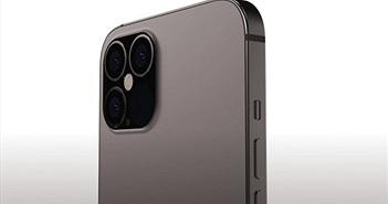 Dòng iPhone 12 sẽ được phát hành theo hai giai đoạn