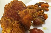 Dị vật trong bụng gà có thể trị giá hàng trăm nghìn USD