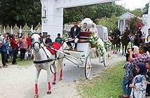 Cha mẹ chi 1,6 tỷ biến con gái thành công chúa trong đám cưới cổ tích