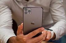 Apple không cập nhật chế độ chụp đêm cho iPhone đời cũ?