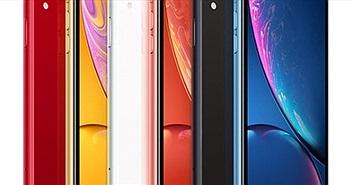 Giá liên tục lao dốc không phanh - kịch bản nào cho số phận iPhone XR?