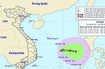 Áp thấp nhiệt đới mạnh lên thành bão số 6, cơn bão Nakri
