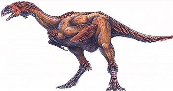 """Tìm thấy hoá thạch khủng long nhỏ như """"gà tây"""" mất tích nhờ… internet"""