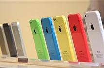 Sẽ không có iPhone 4 inch giá rẻ trong năm 2015?