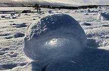 Khối tuyết cuộn tròn giữa cánh đồng Scotland