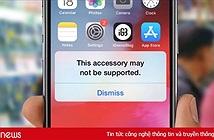 Apple bị kiện vì cố tình làm bộ sạc iPhone ngưng hoạt động để ép người dùng mua sạc mới