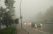 Bí quyết bỏ túi của các tay lái trong thời tiết sương mù