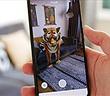 Động vật 3D của Google giúp mọi người ở nhà thêm niềm vui