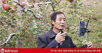 """Doanh nghiệp thương mại điện tử Trung Quốc """"giải cứu"""" nông sản Hồ Bắc sau phong tỏa"""