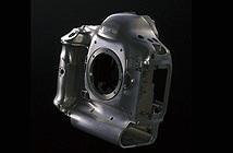 Canon EOS-1D X mark II sẽ được trang bị cảm biến ảnh mới, khắc phục điểm yếu Dynamic range