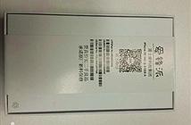 iPhone 4, 5S tận trang đại náo thị trường Trung Quốc