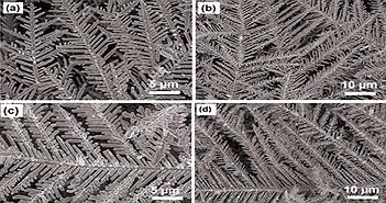 Phát hiện chất độc trong thực phẩm sau 10 phút nhờ nano bạc