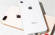 Apple sẽ tiếp tục ra mắt iPhone SE Plus siêu to với mức giá rẻ