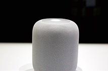 Dân mạng ví loa HomePod mới ra mắt của Apple với cuộn giấy toilet