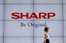 Sharp sẽ mua lại bộ phận sản xuất máy tính của Toshiba