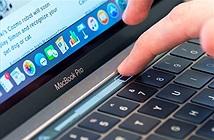 Apple cho biết lý do không làm màn hình cảm ứng cho MacBook