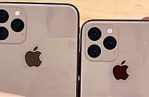 Đây là hình ảnh khẳng định iPhone 11 và 11 Max có camera sau quá dị