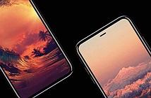 Samsung đang sản xuất hai cỡ màn hình OLED cho iPhone 8