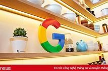 Google sẽ sản xuất tất cả phần cứng bằng vật liệu tái chế vào năm 2022