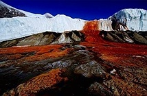 Điều bí ẩn tồn tại cả triệu năm trong thác máu ở Nam Cực