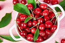 Quả anh đào chua siêu thực phẩm giúp tăng trí nhớ, giảm huyết áp và cholesterol