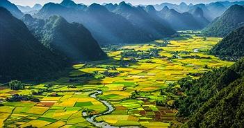 Diện tích Việt Nam lớn thứ mấy tại Đông Nam Á?