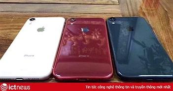 iPhone LCD 6.1 inch lộ 4 màu mới đẹp mắt và khay SIM kép