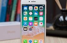 iPhone SE 2 năm sau sẽ là bản sao của iPhone 8
