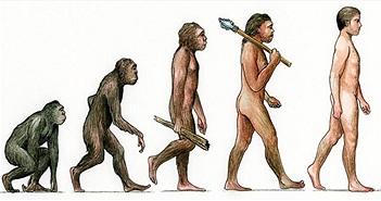 Nguồn gốc của loài người