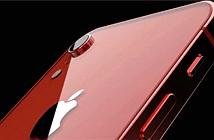 Apple sẽ có iPhone đặc biệt ra mắt mùa xuân 2020