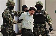 Trùm ma túy Mexico lẩn trốn thành công 13 năm nhờ thiết bị hi-tech