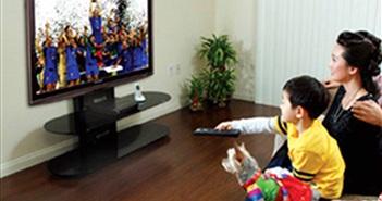 VTV không được kinh doanh dịch vụ truyền dẫn khi chưa lập doanh nghiệp